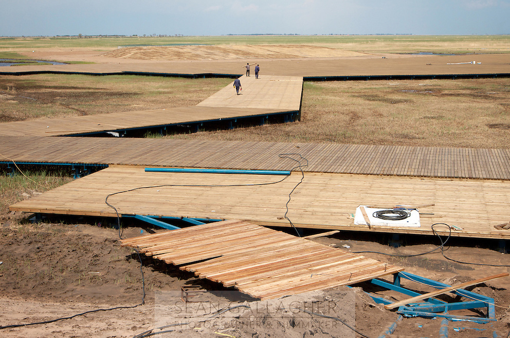 Construction workers building walkways at the Zhalong Wetlands, Heilongjiang Province. China. 2011