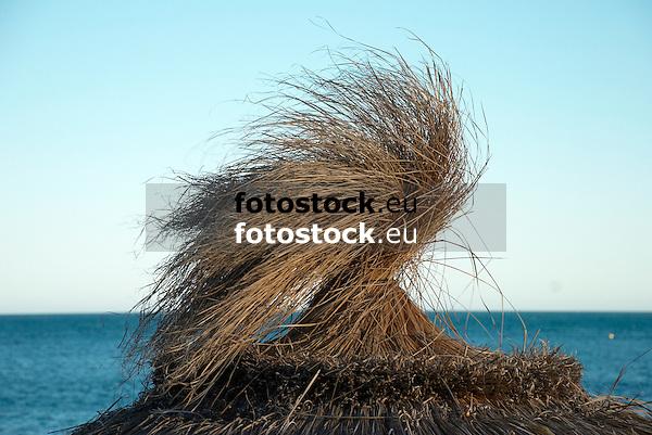 Thatched Sunshade<br /> <br /> Sombrilla de paja<br /> <br /> Strohschirm
