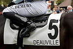 August 15, 2021, Deauville (France) - Saddle cloth for #5 with Jockey Cristian Demuro at the Deauville Racecourse. [Copyright (c) Sandra Scherning/Eclipse Sportswire)]