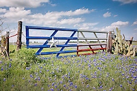 NORTH TEXAS STOCK PHOTOGRAPHY