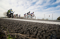 race leaders<br /> <br /> Nokere Koerse 2014