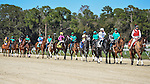 OLDSMAR, FLORIDA - FEBRUARY 13: Destin  #3, ridden by jockey John Velzaquez, on post parade prior to winning the Sam F. Davis Stakes at Tampa Bay Downs on February 13, 2016 in Oldsmar, Florida (photo by Doug DeFelice/Eclipse Sportswire/Getty Images)