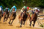 MAYL 17, 2019 : Mylady Curlin, ridden by Luis Saez, wins the Allaire Dupont Distaff Stakes at Pimlico Racecourse, on May 17, 2019 in Baltimore, MD.  Dan Heary_ESW_CSM