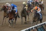 Golden Ticket(3) and Alpha(6) dead heat in the 2012 Travers Stakes(G1). Saratoga Race Course, Saratoga Springs, New York. 08-25-2012.  Arron Haggart/Eclipse Sportswire