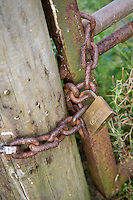 Farm gate lock withchain and pad lock