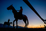 October 27, 2019 : Scenes from preparations for the Breeders' Cup World Championships at Santa Anita Park in Arcadia, California on October 27, 2019. Scott Serio/Eclipse Sportswire/Breeders' Cup/CSM  Scott Serio/Eclipse Sportswire/Breeders' Cup/CSM