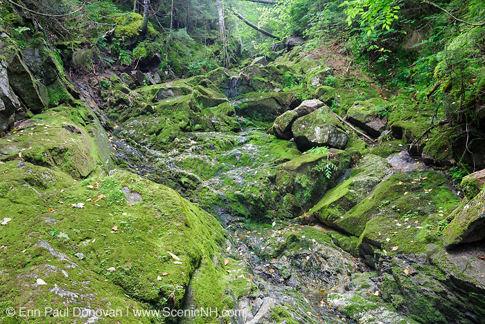 Clough Mine Brook, a tributary of Lost River, on the northern slopes Mount Waternomee in Kinsman Notch of Woodstock, New Hampshire during the summer months.