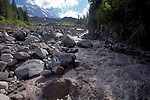 Mount Rainier National Park, eroded creek, Flood damage from November 6, 2006 winter storm, West fork White River, Wonderland Trail, Mount Rainier, Washington State, Pacific Northwest, U.S.A.,
