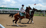May 30, 2015  Chas's Legacy was ready to run with jockey Jon Court in the second race at Churchill Downs.  ©Mary M. Meek/ESW/CSM