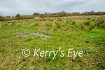 The site of planned Food Hub in Clieveragh Ind Estate in Listowel on Saturday.