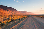The long gravel Fields-Denio road in Southeast Oregon parallels the Steens range and vanishes off into a curve in the distance seen right after sunrise.