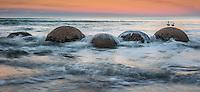 Sunset at Moeraki Boulders beach, Coastal Otago, East Coast, New Zealand