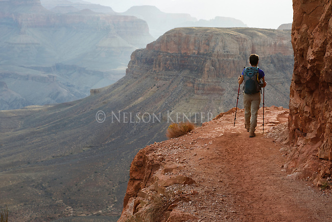 a hiker on the south kaibab trail decending to the bottom of the grand canyon. walking along a steep canyon wall.
