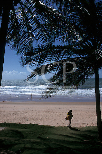 Natal, Brazil. The beach at Ponta Negra with palm tree and girl.