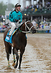 10 May 1: Atta Boy Roy (no. 9), ridden by Calvin Borel and trained by Valorie Lund, wins the 76th running of the grade 2 Churchill Downs Stakes for four year olds and upward at Churchill Downs in Louisville, Kentucky.