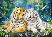 Kayomi, REALISTIC ANIMALS, REALISTISCHE TIERE, ANIMALES REALISTICOS,tiger,tigers, paintings+++++,USKH307,#a#, EVERYDAY