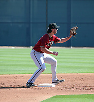 Tristin English - Arizona Diamondbacks 2020 spring training (Bill Mitchell)