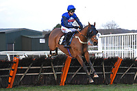 Invite Lake ridden by Paddy Brennan and trained by Suzy smith jump the last in The Strong Flavours Catering Handicap Hurdle   during Horse Racing at Plumpton Racecourse on 10th February 2020