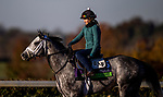 November 4, 2020: Halladay, trained by trainer Todd A. Pletcher, exercises in preparation for the Breeders' Cup Mile at  Keeneland Racetrack in Lexington, Kentucky on November 4, 2020. Alex Evers/Eclipse Sportswire/Breeders Cup
