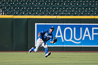 Kansas City Royals left fielder Marten Gasparini (12) prepares to make a sliding catch during an Instructional League game against the Arizona Diamondbacks at Chase Field on October 14, 2017 in Scottsdale, Arizona. (Zachary Lucy/Four Seam Images)