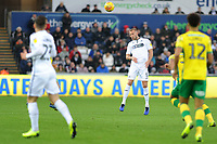 Mike van der Hoorn of Swansea City in action during the Sky Bet Championship match between Swansea City and Norwich City at the Liberty Stadium, Swansea, Wales, UK. Saturday 24 November 2018
