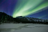 Aurora borealis over the White mountains in the White Mountains National Recreation Area.
