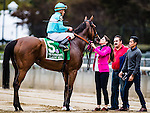 ELMONT, NY - OCTOBER 08: Lady Eli #5, ridden by Irad Ortiz Jr, receiving a kiss, after winning the 39th Running of The Flower Bowl, on Jockey Club Gold Cup Day at Belmont Park on October 8, 2016 in Elmont, New York. (Photo by Douglas DeFelice/Eclipse Sportswire/Getty Images)