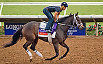 DEL MAR, CA - OCTOBER 28: Kitten's Roar, owned by Kenneth L. and Sarah K. Ramsey and trained by Michael J. Maker, exercises in preparation for Breeders' Cup Filly & Mare Turf at Del Mar Thoroughbred Club on October 28, 2017 in Del Mar, California. (Photo by Alex Evers/Eclipse Sportswire/Breeders Cup)