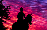 May 12, 2021: A horse returns from the track at sunrise as Preakness Stakes hopefuls train at Pimlico Race Course in Baltimore, Maryland. Scott Serio//Eclipse Sportswire/CSM