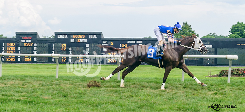 Dancing Lucy winning at Delaware Park on 8/19/19