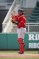 Boston Red Sox Alberto Schmidt (29) during an Instructional League game against the Minnesota Twins on September 23, 2016 at JetBlue Park at Fenway South in Fort Myers, Florida.  (Mike Janes/Four Seam Images)