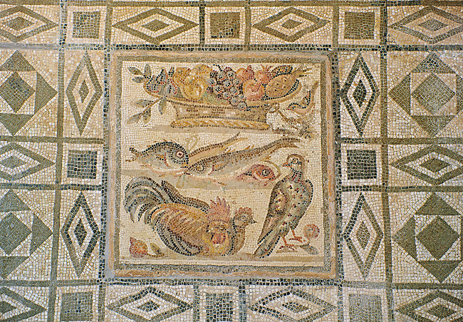Geometric Roman floor mosaic. From the  Grotte Celoni area of the via Casilina, Rome. End of 1st and beginning of 2nd century AD. National Roman Museum, Rome, Italy