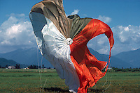 Sky Diver's / Parachute Jumper's Red and White Parachute deflating on the Ground after skydiving / jumping, Fraser Valley, BC, British Columbia, Canada
