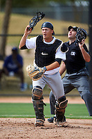 Chicago White Sox minor league catcher Zac Fisher #24 during an instructional league game against the Los Angeles Dodgers at the Camelback Ranch Training Complex on October 6, 2012 in Glendale, Arizona.  (Mike Janes/Four Seam Images)