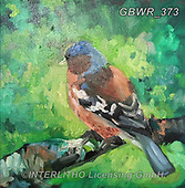 Simon, REALISTIC ANIMALS, REALISTISCHE TIERE, ANIMALES REALISTICOS, innovativ, paintings+++++SueGardner_WIP,GBWR373,#a#, EVERYDAY