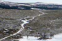 Monday March 12, 2007   ----   A team runs down the ribbon of snow on the trail between Unalakleet and Shaktoolik