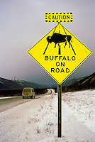 Alaska Highway, Northern Rockies, BC, British Columbia, Canada - Warning Caution Road Sign for Buffalo Animal Crossing, Winter