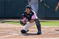 August 30, 2009: Everett AquaSox catcher Trevor Coleman blocks the plate during a Northwest League against the Salem-Keizer Volcanoes at Everett Memorial Stadium in Everett, Washington.  The AquaSox wore pink jerseys for breast cancer awareness.