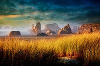 Dune grass and sea stacks at Bandon Beach . Oregon