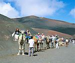 Spain, Canary Island, Lanzarote, Timanfaya National park: camel riding   Spanien, Kanarische Inseln, Lanzarote, Timanfaya Nationalpark: Dromedarreiten durch die Feuerberge
