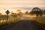 A sea of winter fog at the edge of the Great Central Valley at sunset drifts into the Sierra Nevada Foothills in Amador County, Calif.