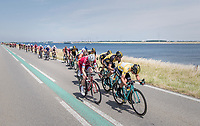 When exposed to the heavy sea winds, Team LottoNL-Jumbo forces the peloton to break into echelons with yellow jersey / GC leader Primoz Roglic (SVK/LottoNL-Jumbo) taking to the front himself.<br /> <br /> Ster ZLM Tour (2.1)<br /> Stage 2: Tholen > Hoogerheide (186.8km)