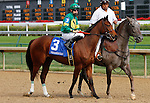 September 12, 2015:  #3 Dream Dance and jockey Brian Hernandez Jr. in the $200,000 Grade 2 Pocahontas for 2 year old fillies at Churchill Downs.  Candice Chavez/ESW/CSM