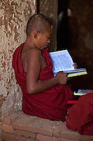 Myanmar, Burma. Bagan. Young Novice Monk Reading.