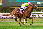 OCT 04, 2020 :  Plum Ali with Jose Ortiz aboard, wins the Grade 2 Miss Grillo Stakes, for 2 year old fillies, on the inner turf at Belmont Park, Elmont, NY.  Sue Kawczynski/Eclipse Sportswire/CSM