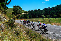 Masterton-Alfredton road circuit - Stage Two of 2021 NZ Cycle Classic UCI Oceania Tour in Wairarapa, New Zealand on Wednesday, 13 January 2021. Photo: Dave Lintott / lintottphoto.co.nz