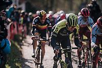 Christopher Juul-Jensen (DEN/Michelton-Scott) up the Molenberg (cobbles)<br /> <br /> Omloop Het Nieuwsblad 2018<br /> Gent › Meerbeke: 196km (BELGIUM)