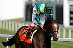 August 10, 2019 : Sistercharlie, ridden by John Velasquez, after winning the Beverly D. Stakes during Arlington Million Day at Arlington International Racecourse in Arlington Heights, Illinois. Jon Durr/Eclipse Sportswire/CSM