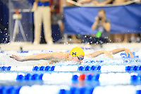 The University of Michigan men's swimming and diving team compete on the final day of the 2016 NCAA National Championships in Atlanta, GA. March 23, 2016