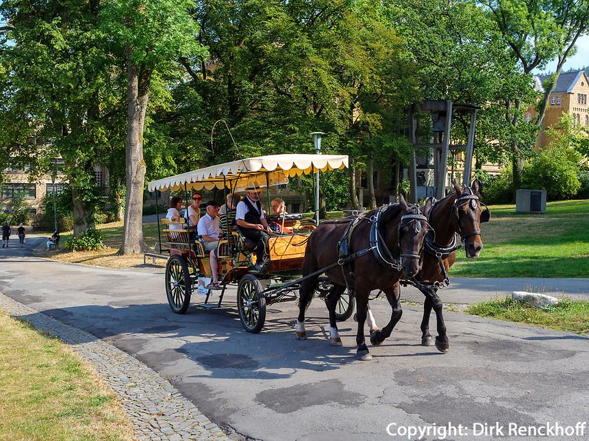 Pferdekutsche vor Kaiserpfalz in Gosla., Niedersachsen, Deutschland, Europa<br /> horse carriage at KaiserpfalzBronze statues at Kaiserpfalz 11.c. , Goslar, Lower Saxony,, Germany, Europe